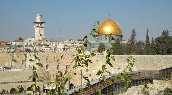 В ближайшее воскресенье по всему миру пройдет молитва за Иерусалим